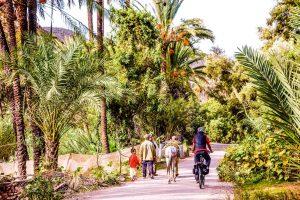 e-bike-reisen-Marokko8.jpg