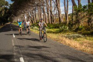 e-bike-reisen-sdafrika7.jpg